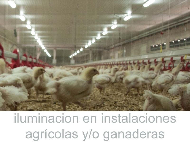 Auditoria iluminacion agricola ganadera